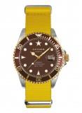Yellow Turtle 4o